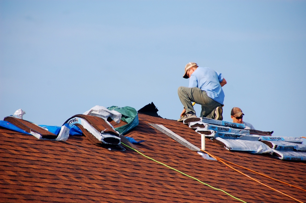 Picture of roofrer